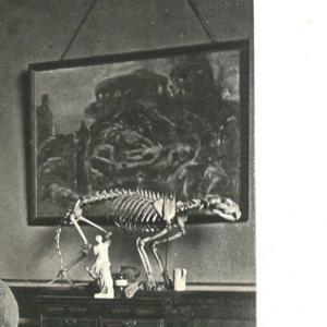 Riviere_det_skeleton.jpg